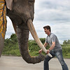 Cirque du Soleil: XBOX Kinect Elephant :