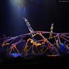 Cirque du Soleil: TOTEM :
