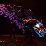 Tokyo Disney Seas - Out of Shadowland  - Kagedori Bird